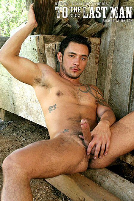 teddy bear gay