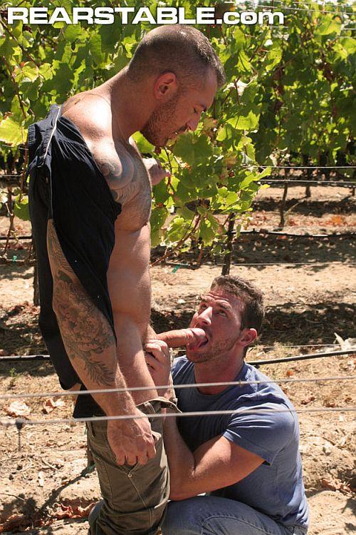 Francesco and rusty fuck in the vinyard