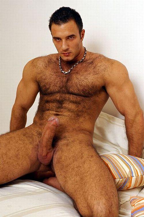 волосатые геи кавказцы